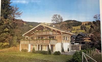 Location Appartement Schönried