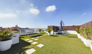 Location Villa sur toit Ta' Xbiex