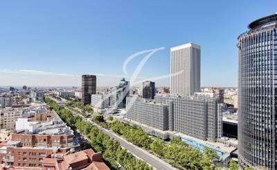 Vente Bureau Madrid