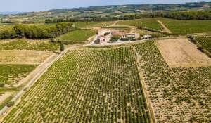 Vente Propriété viticole RASTEAU