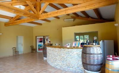 Vente Propriété viticole Rochefort-du-Gard