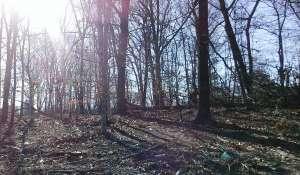 Vente Terrain Bridgehampton