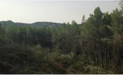 Vente Terrain Palma de Mallorca