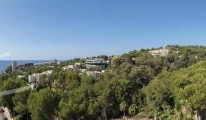Vente Villa sur toit Cas Català
